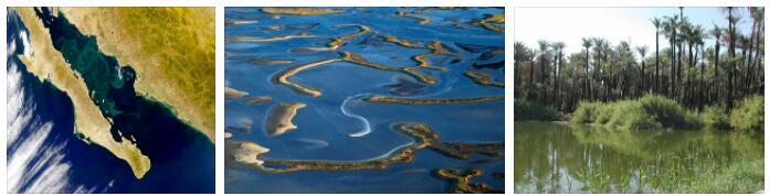 Gulf of California (World Heritage)